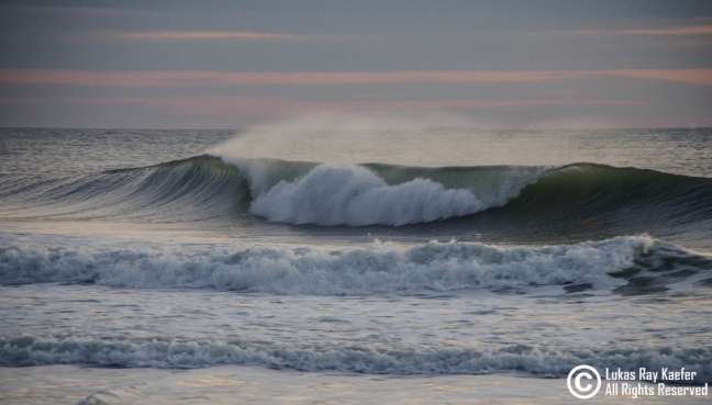 Early morning in February, Monmouth County, NJ. Photo: Lukas Kaefer
