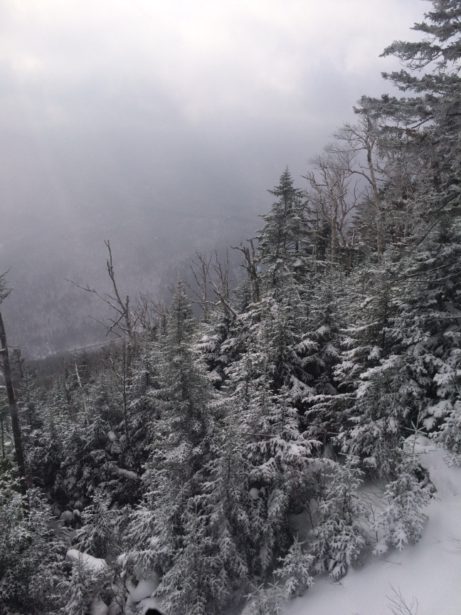 Snowy, cloudy view from the top of the gondola. Whiteface, Lake Placid, NY.
